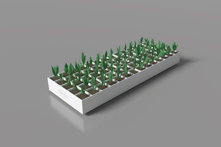 Seedtrays image